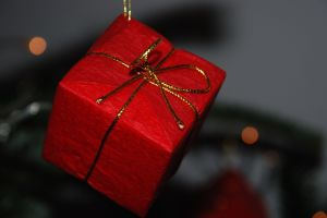 Joyeuses fêtes ! Photo : Francis Ledoux (CC BY-NC-ND 2.0)